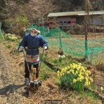The scarecrow master of Shikoku, Japan