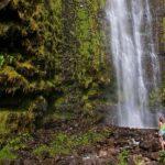 Hawaii's trendy word that's misunderstood